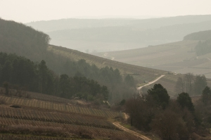 An little known view of Corton from the Pernand-Magny-Les-Villers road.
