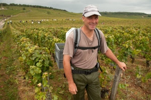 Didier from Corton helps out in Vosne