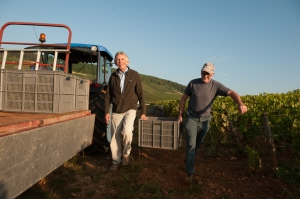 Jean-Charles and Claude load the precious chardonnay