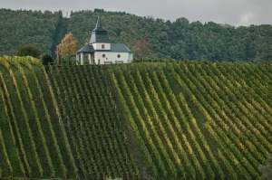A chapel overlooks the village of Leiwen from the steep west facing slopes above the Mosel