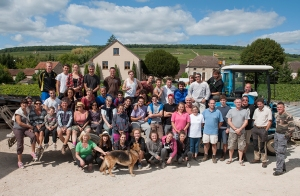 Heading north from Beaune I find Domaine Cornu's team celebrating the end of their harvest in Ladoix-Serrigny