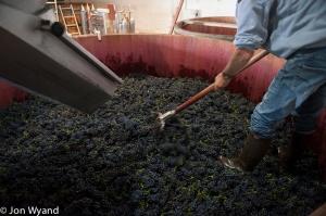 What price a vatful of Romanée Conti pinot noir?