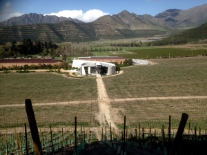 The Icon winery at Errazuriz.
